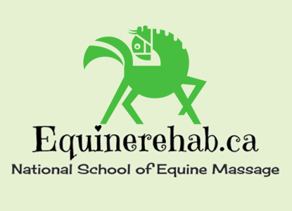 Learn Equine Massage